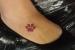 tatuagem patinha de cachorro_edited