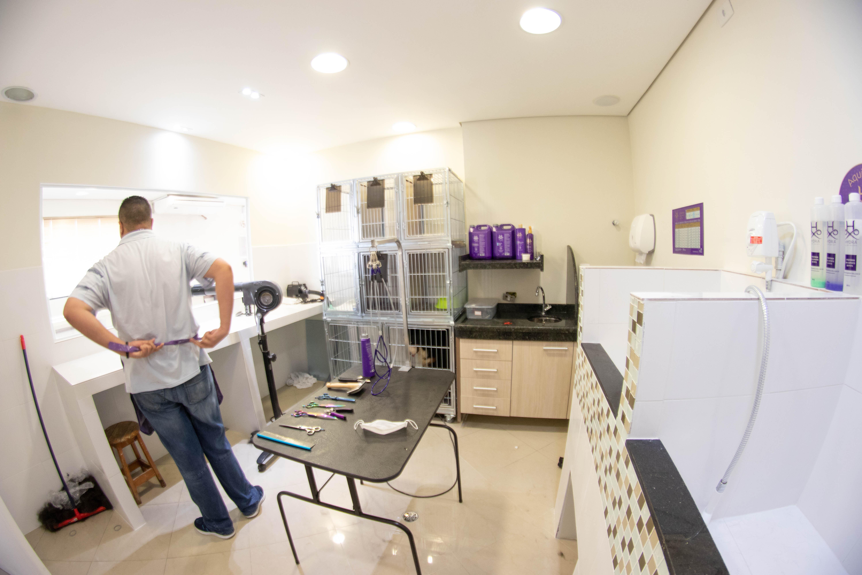 clinica-veterinaria-sp-zona-norte