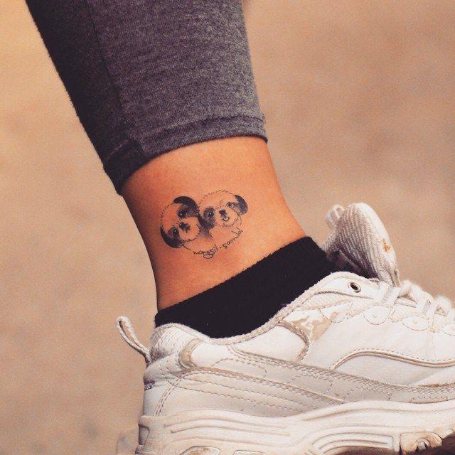 tatuagem de shih-tzu