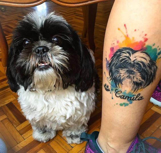 shihtzu-tatuagem
