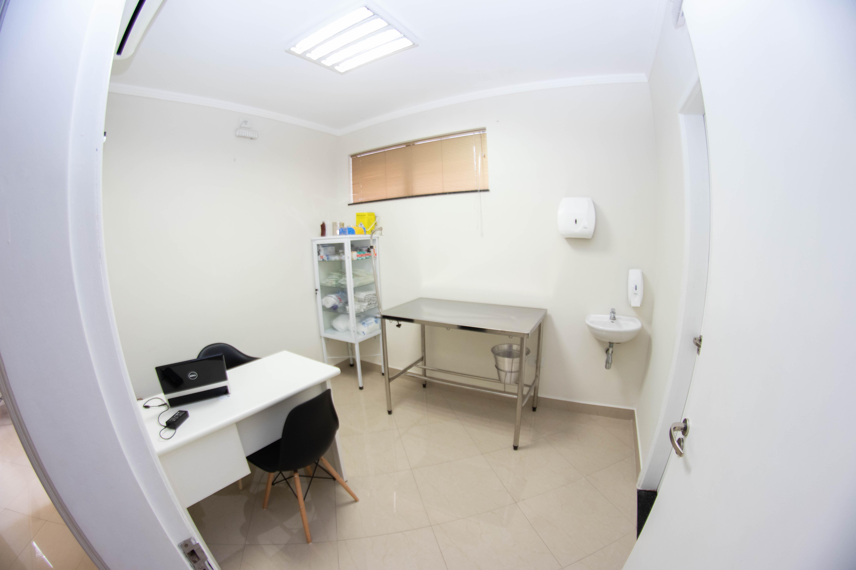 veterinario-sp-zn2